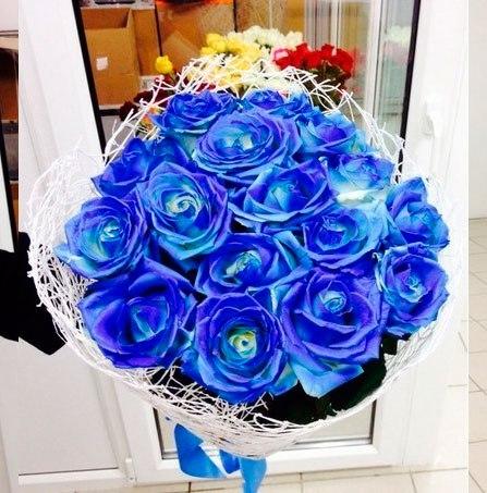 Синие розы челябинск купить